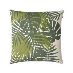 Palm graenn