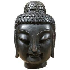 Buddha hofud